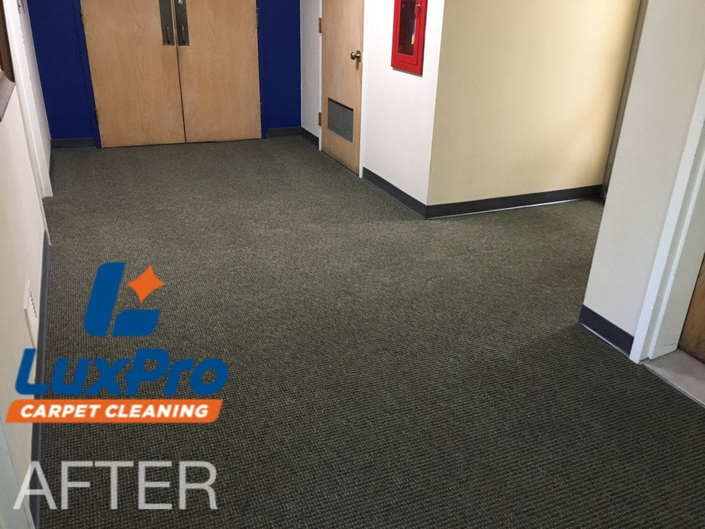 RELIABLE COMMERCIAL CARPET CLEANING SERVICES While the carpet in our homes can easily get dirty, these areas in a commercial property can become even worse. If you continuously have employees and customers moving in and out of your commercial building, a mess is bound to happen. To ensure a safe and healthy workplace, it's essential to choose a trusted carpet cleaning provider like LuxPro Carpet Cleaning! TOP-NOTCH COMMERCIAL CARPET CLEANING Our team is happy to provide in-depth carpet cleaning services for your commercial property. Whether you have a tiny office building or something gigantic, we're here to help! With our low-moisture cleaning process, your carpets can be dry within just a few hours. Furthermore, we have some of the most innovative carpet cleaning methods in the industry, so you can rest easy knowing your carpets will be spotless and stain-free!